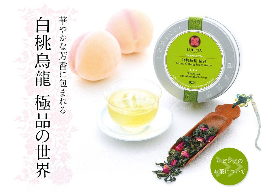 日本茶葉專賣店精典熱賣款 秋季新茶